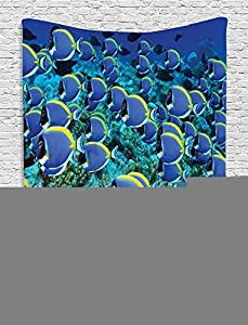 Collection School of Powder Tang Fishes in the Coral Reef Maldives