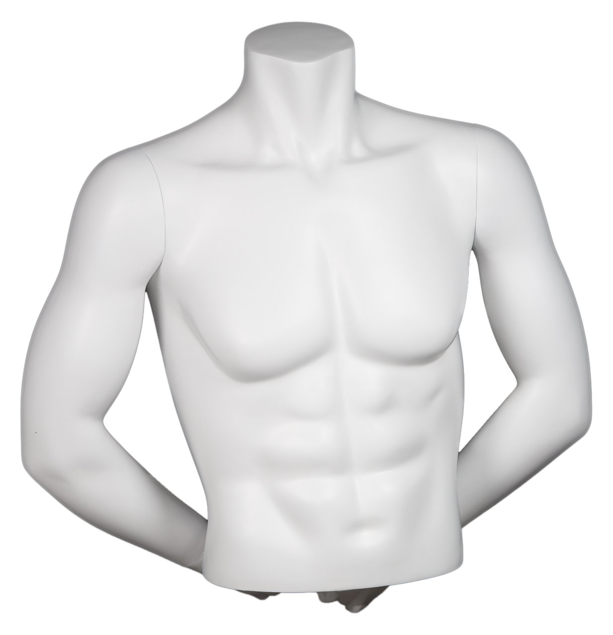 Newtech Display MAM-A4-3505/WHT Male 1/2 Muscular Torso with Arms, Matte White