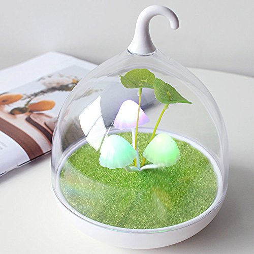 Touch Dimmer Color Changing Children's Lamp with Sensor Vibration Birdcage Chargeable Bedside Lamp Hand-held Design Portable Lamp USB Charging for Kids/Babys'Bedroom,Home Decoration(Mushrooms Sprout) ()