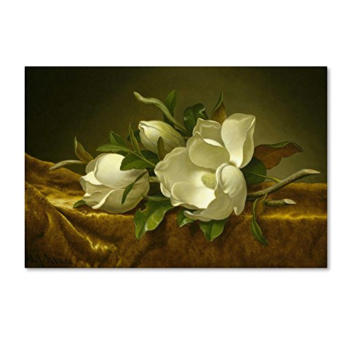 (Magnolias On Gold Ornate Frame Velvet Cloth by Martin Johnson Heade, 22x32-Inch Canvas Wall)