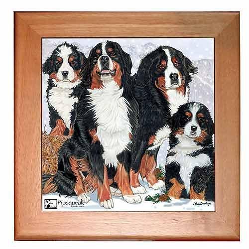 - Bernese Mountain Dog Trivet Hot Plate Wall Decor 8 x 8 Inch