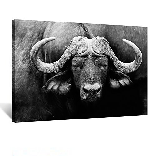 (Kreative Arts - Artistic Black and White Image of a African Cape Buffalo Canvas Wall Art Animal Picture Gallery Wrap Giclee on Canvas Abstract Artwork Stretched and Framed for Office Decor 24x36inch)