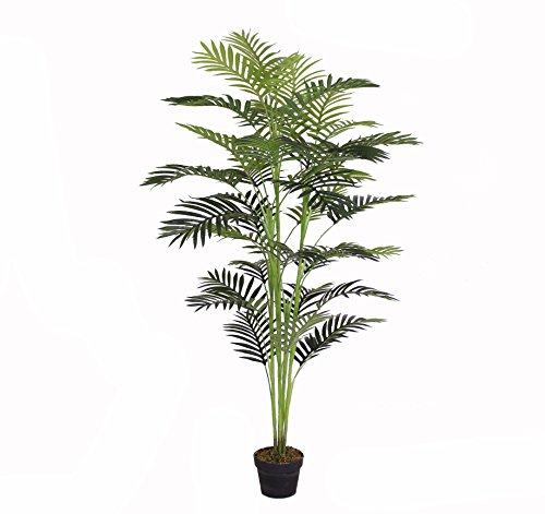 - AMERIQUE Gorgeous 5.5' Tropical Areca Palm Tree Artificial Silk Plant with UV Protection, with Nursery Pot, Feel Real Technology, Super Quality, Feet, Green
