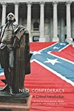 Neo-Confederacy: A Critical Introduction