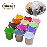 Dproptel All-in-1 Mini Metal Bucket Candy Favours Box Pail Wedding Party Gift/Serving Bucket, Chip Bucket, Condiment Packet Holder, Ash Tray Bucket (Multicolor)