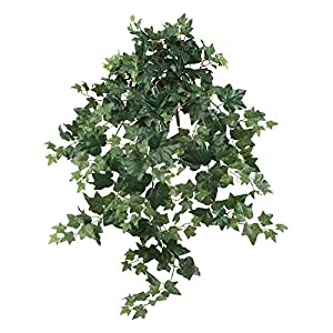 "Nearly Natural 6062-S2 41"" Puff Ivy Hanging (Set of 2) Artificial Plant Green 66"