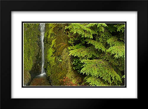 WA, Mt Baker Wilderness, Small Waterfall 18x13 Black Modern Frame and Double Matted Art Print by Paulson, ()