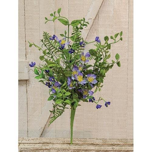 Heart of America Blue Violet Bush 20''
