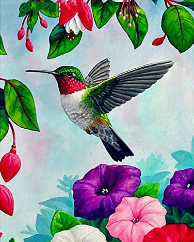 5D Diamond Painting Kits DIY Creative Handmade Bird Illustration Art Art Round Bead Drill Rhinestone Crystal Painting b…