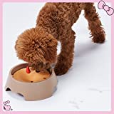 Stock Show 1Pc Innovative 2 in 1 Anti-Spill No Spill Dripless Water/Food Contanier Pet Bowl, Plastic Anti-choking Slow Feeder Feeding Dish Plate for Dog/Puppy/Cat/Kitty