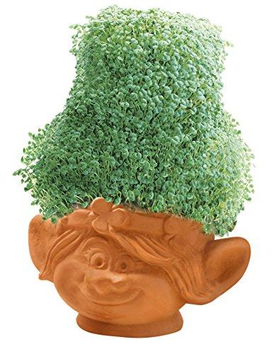 JOSEPH ENTERPRISES, Trolls Poppy Chia Pet Toy