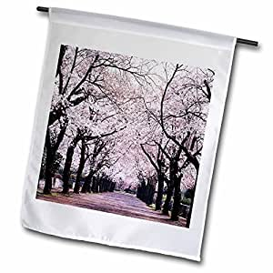 fl_50970_1 Florene Trees - Lined With Cherry Blossom Trees - Flags - 12 x 18 inch Garden Flag