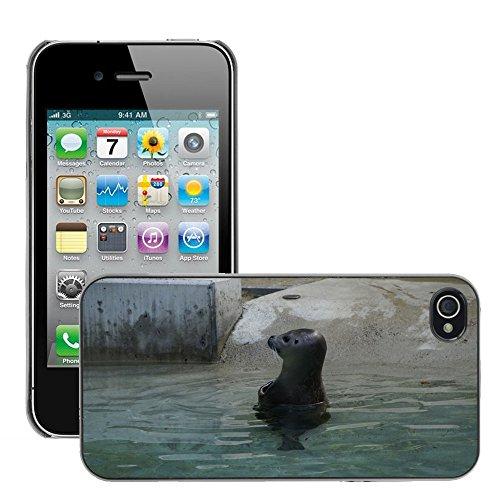 Bild Hart Handy Schwarz Schutz Case Cover Schale Etui // M00134308 Sperrwasser Meeresbewohner Zoo // Apple iPhone 4 4S 4G