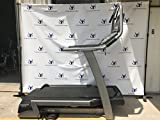 FreeMotion Commercial Incline Trainer with Workout TV Console