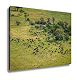 Ashley Canvas, Aerial View Of A Herd Of Buffaloes, Home Decoration Office, Ready to Hang, 20x25, AG6345100