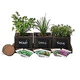 Cedar Planter Box - Complete Herb Garden Indoor Kit - Herb Growing Kit - Grow Cooking Herbs Basil, Chives, Thyme, Oregano, Parsley & Cilantro