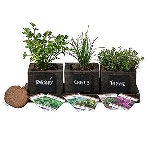 (FATPLANTS Cedar Planter Box - Complete Herb Garden Indoor Kit - Herb Growing Kit - Grow Cooking Herbs Basil, Chives, Thyme, Oregano, Parsley & Cilantro (Wicker Brown))