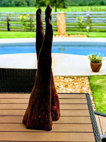 Cypress Tree Knees Wood - Fresh Cut Wood ()