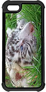 Rikki KnightTM Baby white Tiger In Grass With Bright Blue Eyes 2-In-1 Black Hard Plastic top with Black Silicone Rubber Protective Insert Case Cover for Apple iPhone 5 & 5s