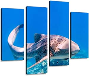 Rare Close-up Encounter with Endangered Species Zebra Leopard Shark Canvas Wall Art Hanging Paintings Modern Artwork Abstract Picture Prints Home Decoration Gift Unique Designed Framed 4 Panel