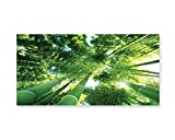 Lunarable Bamboo Wall Art, Low Angle View of Bamboo Tree Tops Asian Zen Tranquil Lands Jungle Meditation Spa Theme, Gloss Aluminium Modern Metal Artwork for Wall Decor, 23.5 W X 11.6 L Inches, Green