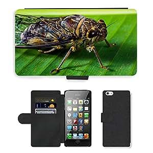 CARD POCKET BOOK CASE PU LEATHER CASE // M00103953 Insectos Nueva insectos Whopper Cerrar // Apple iPhone 5 5S 5G