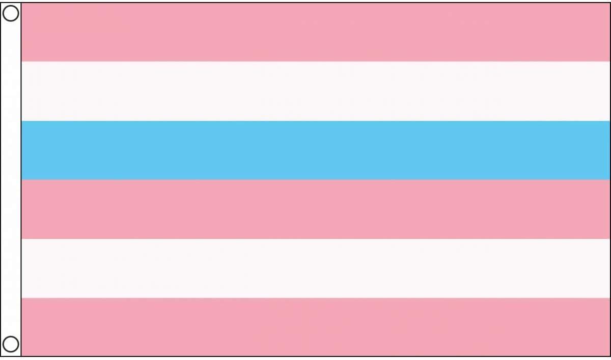 AZ FLAG Intersex Pink and Blue Pride