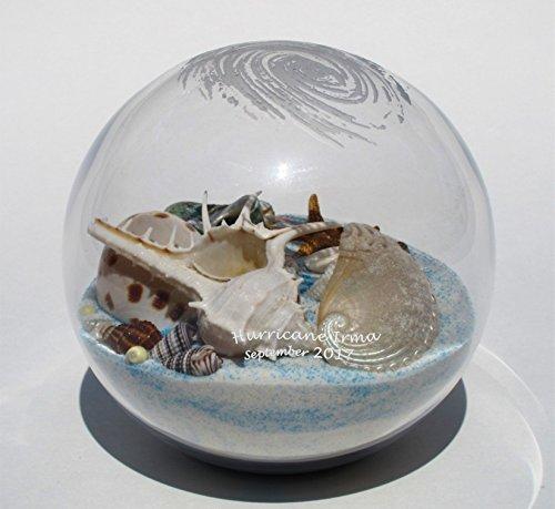 Beachball Sandglobe Hurricane Irma Sand and Seashell Sandglobe (4 inch diameter, SeaBreeze (White-Blue mix)) (Breeze Glass Sea Round)