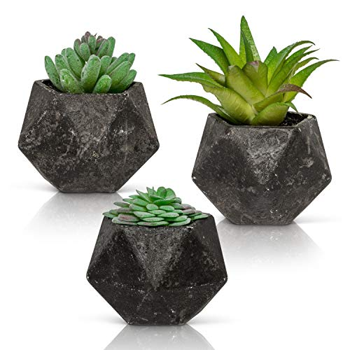 Ashbrook Outdoors Artificial Succulent Plants with Pots (Set of 3) | 3 Faux Plants in Potted Dark Gray Succulent Planters | Modern Home Décor Accents for The Office, Desk, Living Room, and More