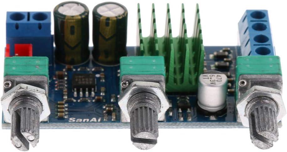 P Prettyia Módulo de Panel de Amplificador de Potencia Piezas de Reparación de Reproductor de Audio