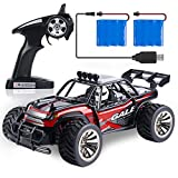 SGILE RC Car Remote Control Car - 1/16 2.4Ghz Off-Road Vehicle Crawlers, 15 KM/H High Speed Rechargeable Fast Buggy Car Toy, 2WD Electric Racing Monster Truck Climber for Kids Adults