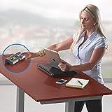 LifeSpan TR5000-DT3 Under Desk Treadmill | For