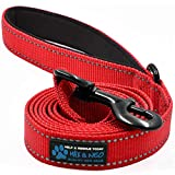 Max and Neo Reflective Nylon Dog Leash - We Donate a Leash to a Dog Rescue for Every Leash Sold (RED, 4x1)
