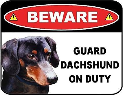 Amazon.com: Cuidado con guardia perro salchicha (negro) de ...