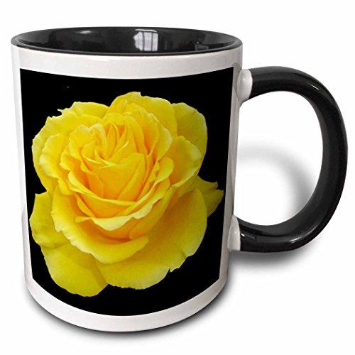 3dRose Taiche - Photography - Yellow Rose - Yellow Rose Close up photograph ofyellow rose of texas isolated on black background - 15oz Two-Tone Black Mug (mug_128284_9)