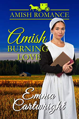 Pdf Spirituality Amish Burning Love (Peachey Family Blessings Book 1)