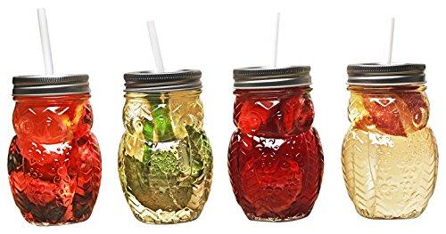 Circleware 69049 Hoot Owl Glass Mason Jars, Clear