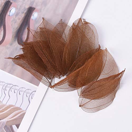 Skeleton Leaves - New 20Pcs Natural Magnolia Skeleton Leaf Leaves Card Scrapbook Bookmarks Festive Party Supplies Wedding Home Decoration