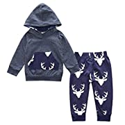 Bjinxn Toddler Infant Baby Boy Long Sleeve Outfits Deer Hoodie Tops and Pant Sets 0-6Months gray
