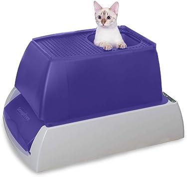 Amazon.com: PetSafe ScoopFree - Arena para gatos ...
