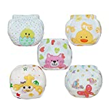 Babyfriend Baby Girls' Reusable 5 Pack Toilet Training Pants Nappy Underwear Cloth Diaper TP5-003