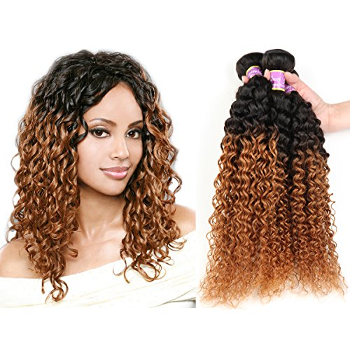 Beauty Youth Hair Malaysian Curly Virgin Hair Weave Ombre Hair 3 Bundles Malaysian Kinky Curly Remy Hair Extensions 2 Tones 300g/Lot 100% Unprocessed Wet And Wavy (14 16 18, 1B/30)
