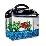 Imagitarium Betta Fish Dual Habitat Tank in Black, 0.8 gal.