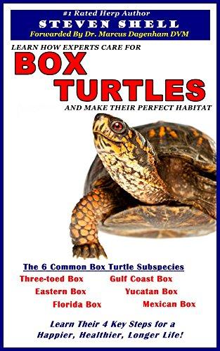 Box Turtle Care - 7