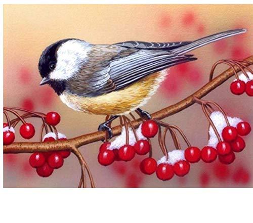 YueQiSong Kits Rhinestones Painting Bird with Berries Mosaic Pattern Diamond Embroidery Modern Contemporary Wallpaper Diamond Inlay Handicraft 30X40Cm