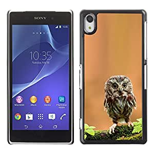 YOYO Slim PC / Aluminium Case Cover Armor Shell Portection //Cute Curious Mini Owl //Sony Xperia Z2
