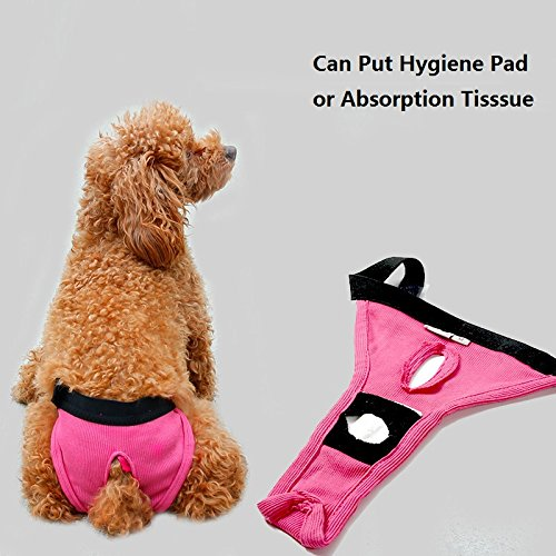 Stock Show 3Pcs Premium Reusable Female Dog Diaper Pants with Velcro, Washable Elastic Rib Polyester Sanitary Physiological Shorts Pants for Pet Dog Puppy Teddy (L)