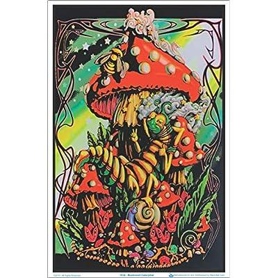 (24x36) Mushroom Caterpillar Fantasy Flocked Blacklight Poster Art Print: Alice In Wonderland Caterpillar Poster: Posters & Prints