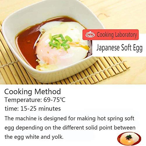 Li Bai Commercial Electric Egg Cooker Japanese Hot Spring Egg Maker 60 Eggs Capacity 2600W 110V for Soft Boiled Eggs by Li Bai (Image #6)