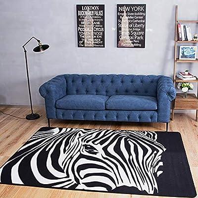 Amazon.com: ZHFHAPPY Carpet Bedroom Living Room Floor Mat ...
